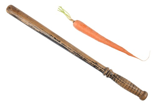 Carrot and the stick